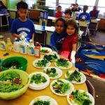 Garden Salad (2)